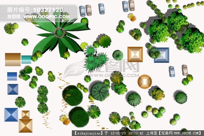 psd植物素材; 植物平面构成图片;